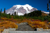 Mt. Rainier with fall color #4