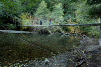 Suspension Bridge on Ohanapechosh River
