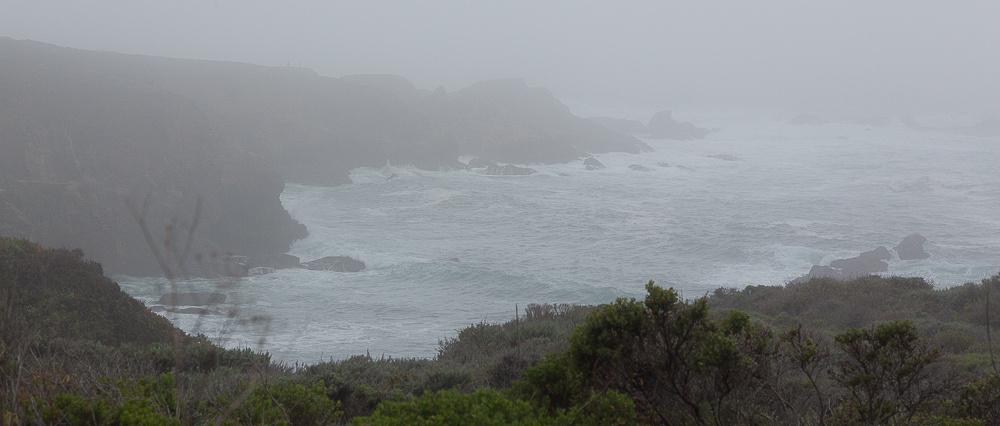 Foggy day at Garapata State Park