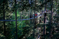 Capilano tree top walk