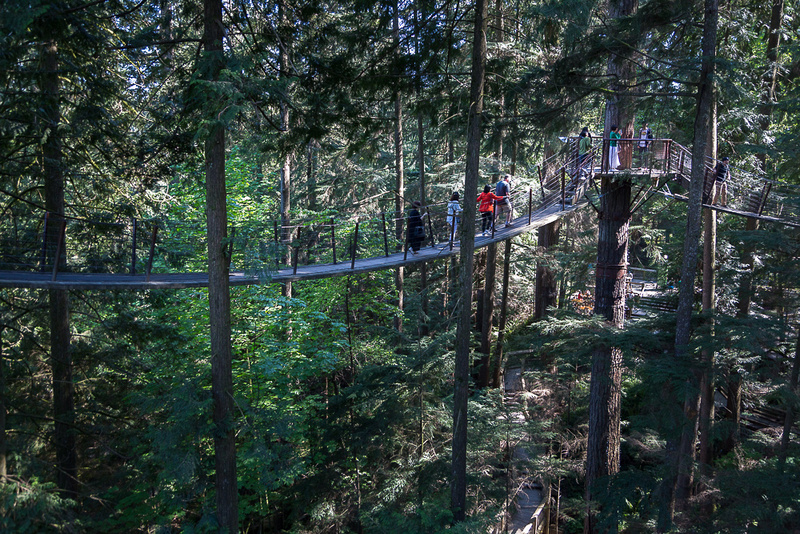 Capilano tree top walk