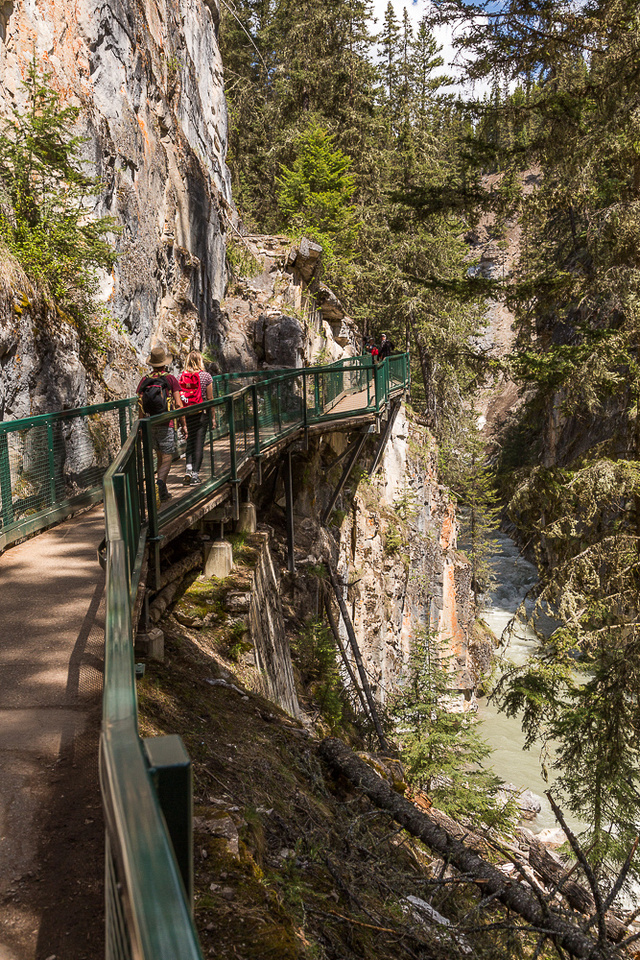 Johnston Canyon Trail #1