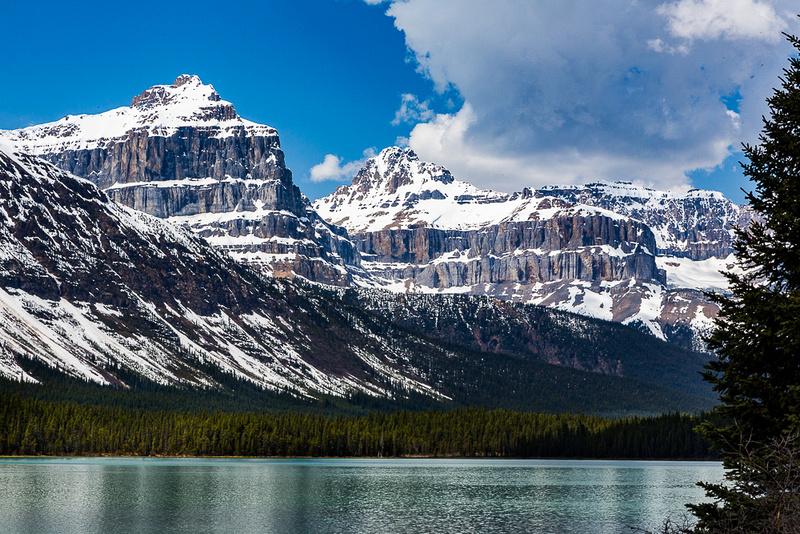 Waterfowl Lake and Canadian Rockies