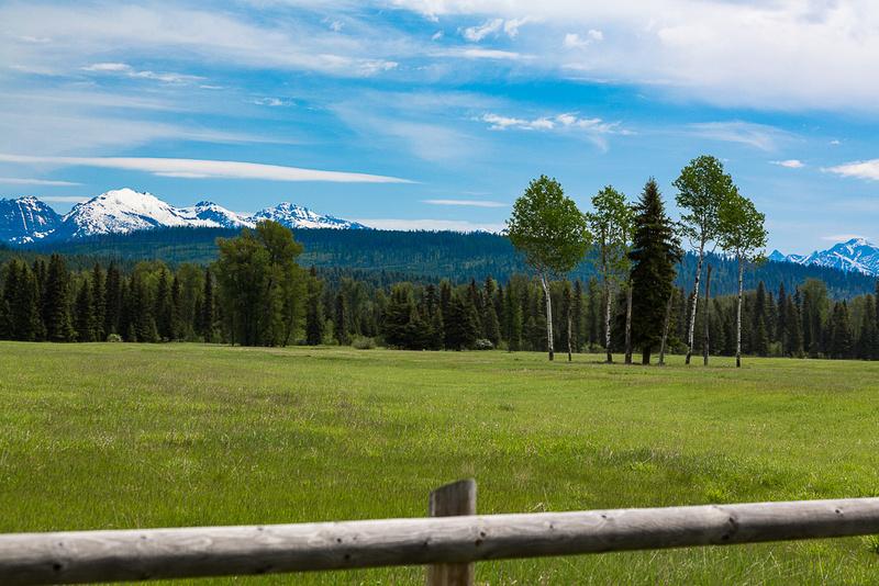 Meadow near Polebridge Montana