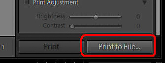 07 I - Print to File button