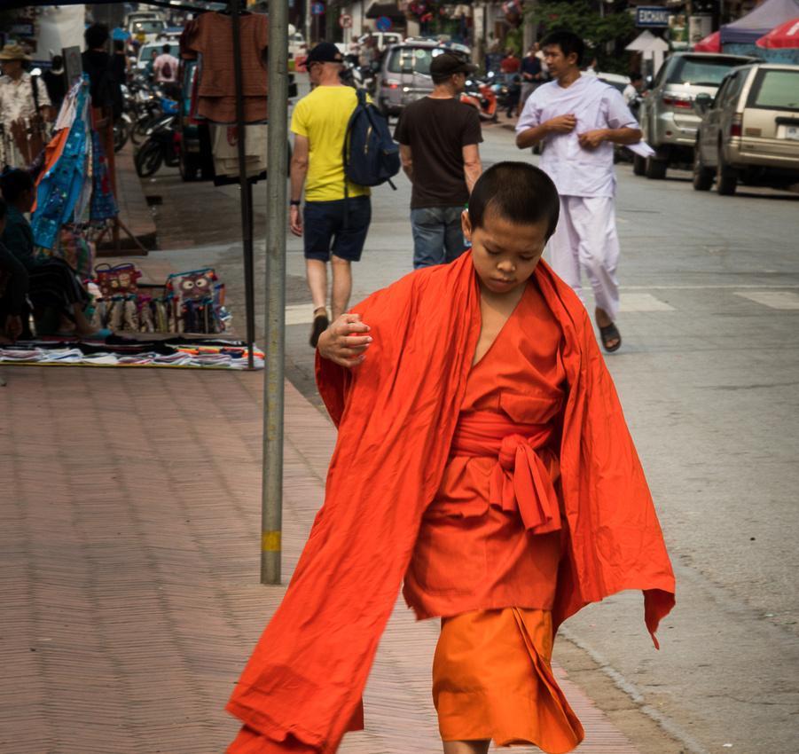 Young monk in training. Luang Prabang Laos