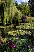 Claude Monet Garden pond #2, Giverny, France