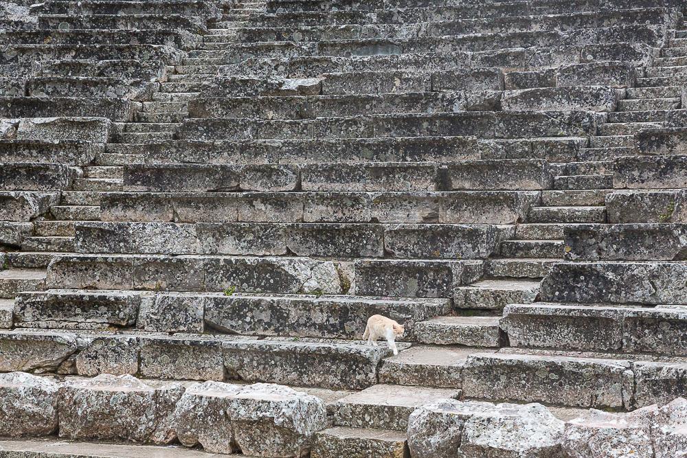 Ancient Epidaurus Greek Theatre