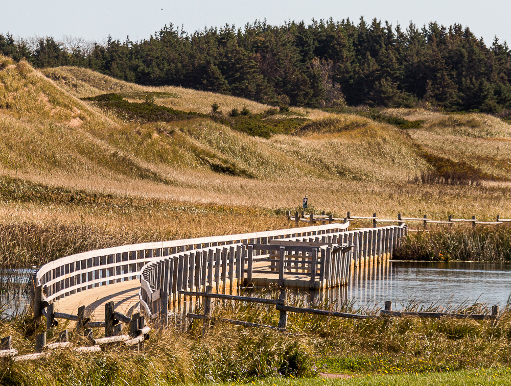 Cavendish National Park Board Walk (PEI, Canada)