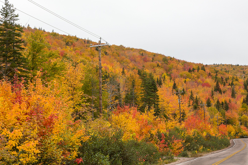 Fall Color Hillside, Cape Smokey (Cape Breton Island, NS Canada)