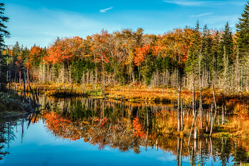 Fall Reflections Cape Breton Island