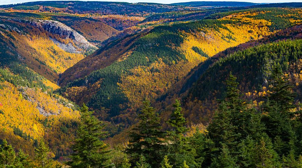 Fall color carpet over MacKenzie Mountain area hills (Cape Breton Island, NS Canada)