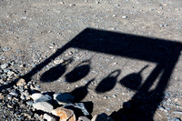 Teakettle Junction Shadow