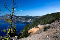 Crater lake and moss covered tree