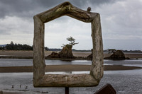 Framed Cypress