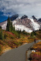 Mt. Rainier with fall color #2