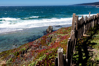 Fence and Sea #2