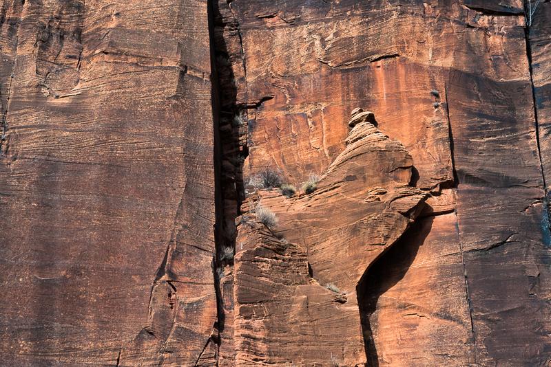 Zion National Park Hoodoo