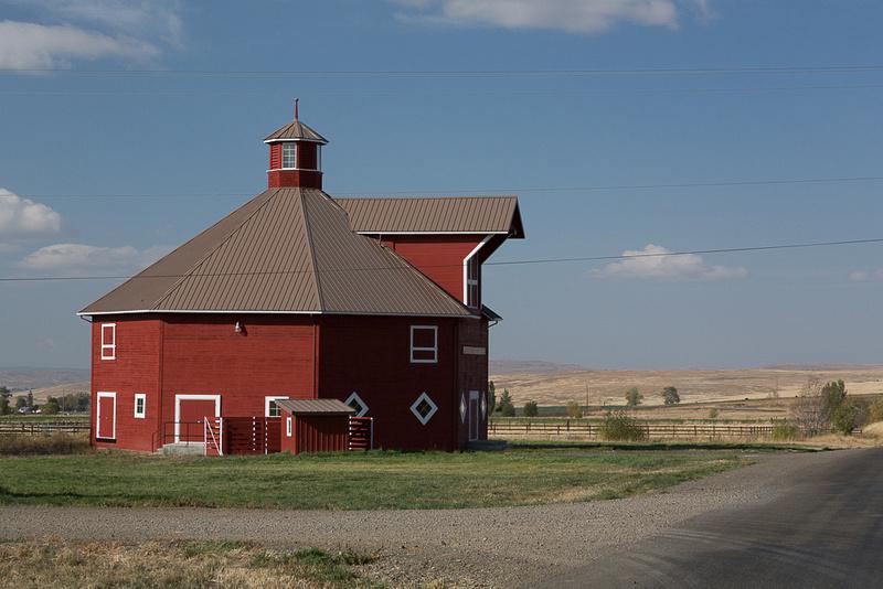 Octo Barn #2