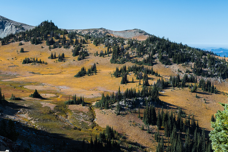 Fall Meadow from Sunrise Point
