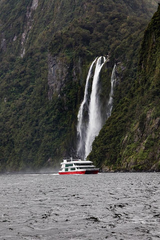 Milford Sound, Fjordland National Park, NZ #10
