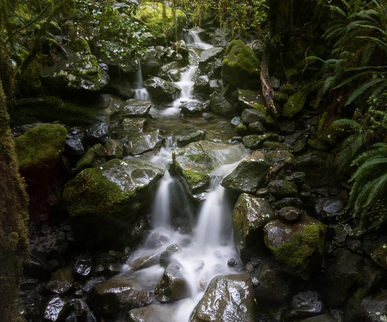 cleddau River trobuarycascade