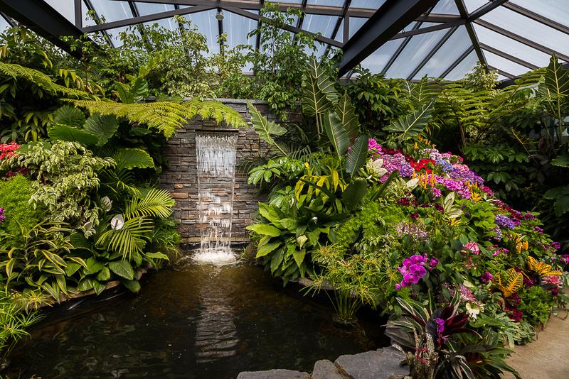 Tropical Profusion  (Butchart Garden)