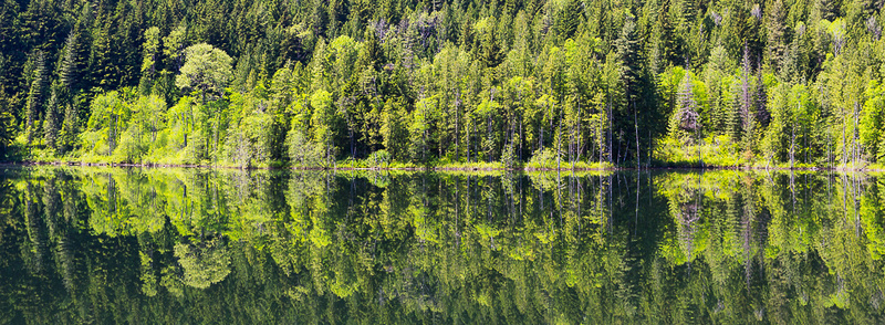 Green on Green, Griffen Lake BC