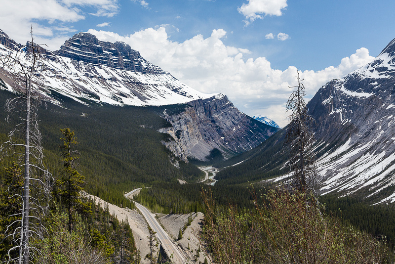 Icefields Parkway & Cirrus Mountain