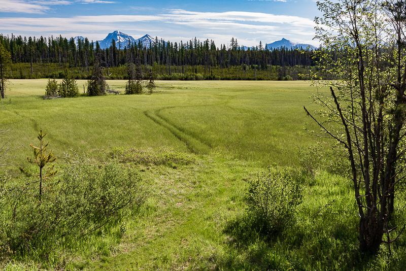 McGee Meadow