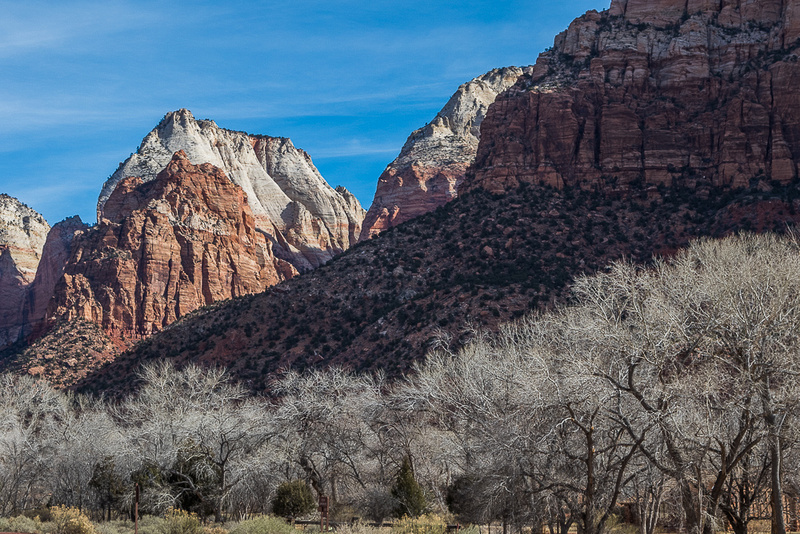 Zion National Park in winter #1