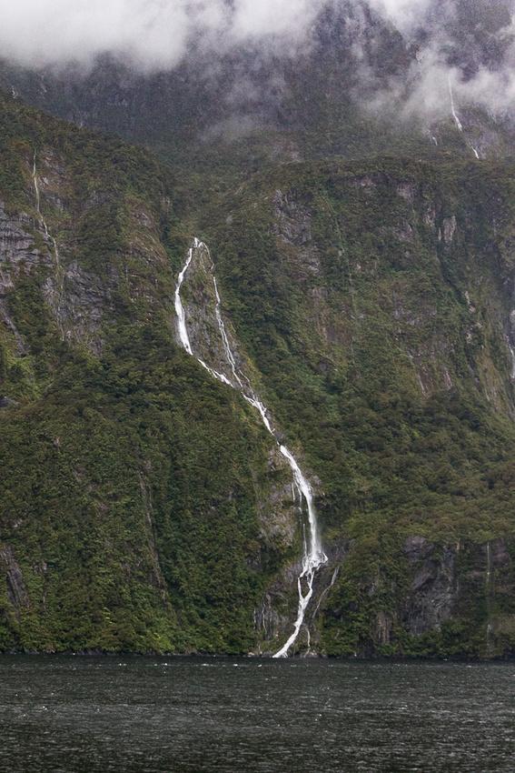 Milford Sound, Fjordland National Park, NZ #4