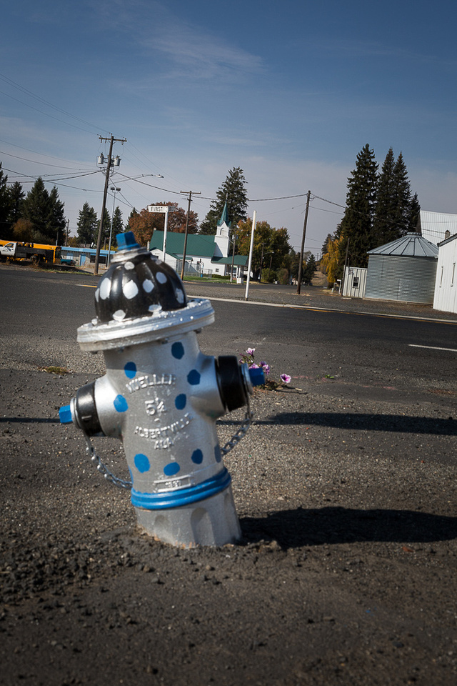 Tippy Oakesdale fire hydrant