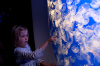 Young girl watching Moon Jellies